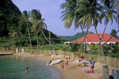 People on palm lined beach in Guadaloupe